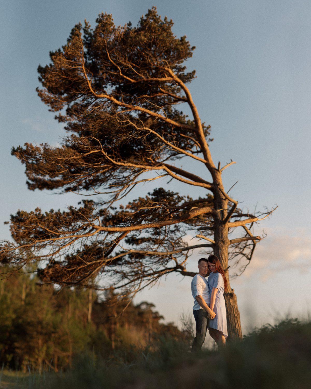 Poros fotosesija prie jūros, prie senos, vėjo suformuotos pušies